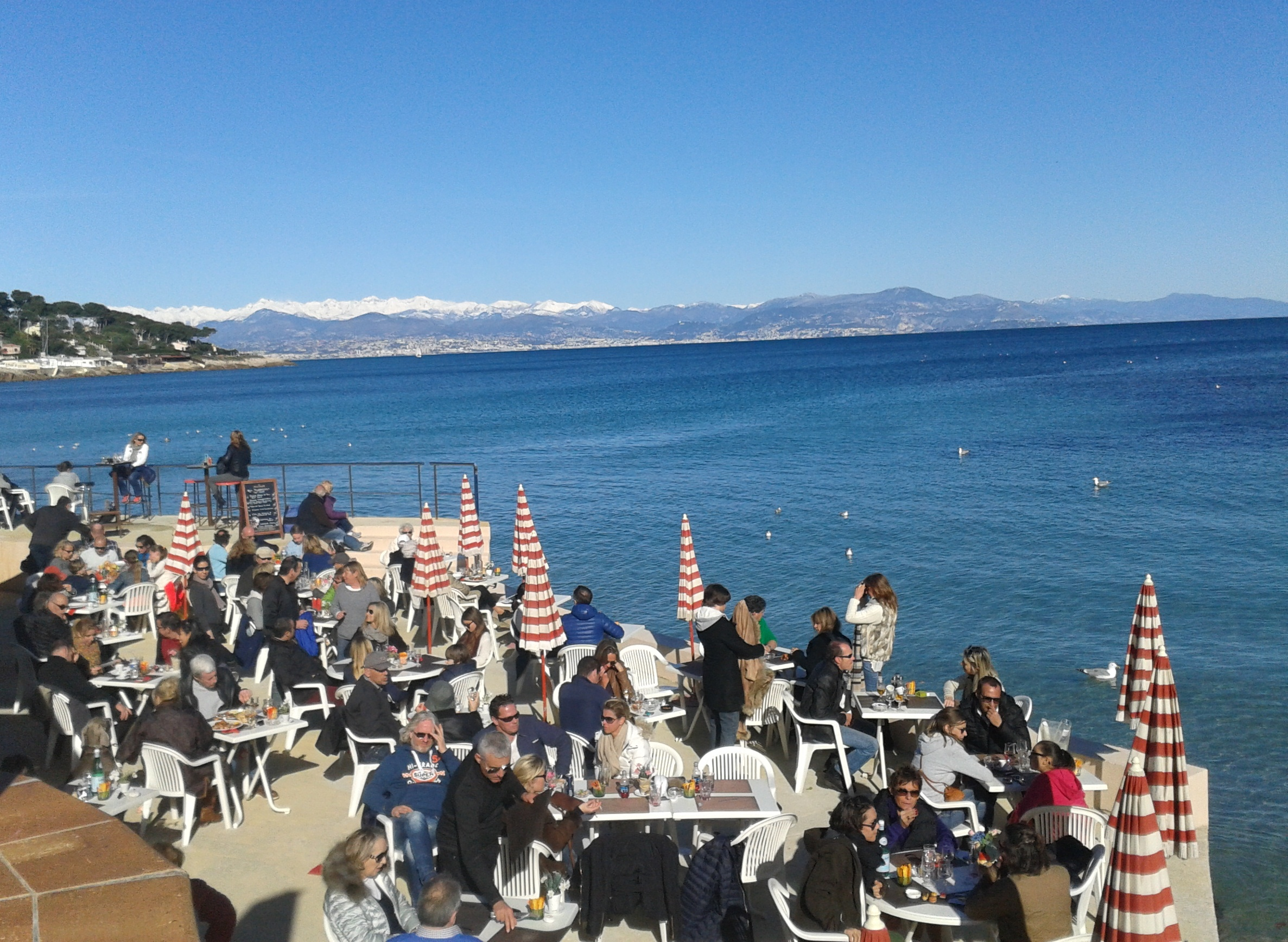Luncheon on the Cap d'Antibes